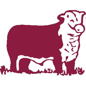 Favicon SOCODICA Sociedad Comercializadora y Distribuidora de Carnes
